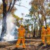 bushfire fighting foam